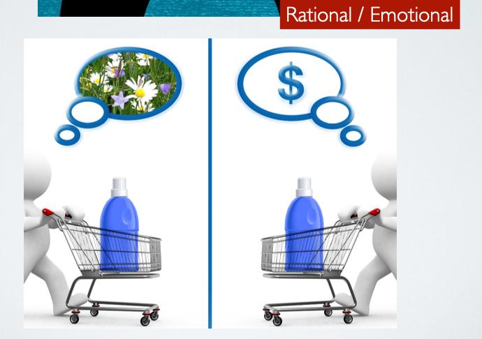 Motivation - Rational /Emotional