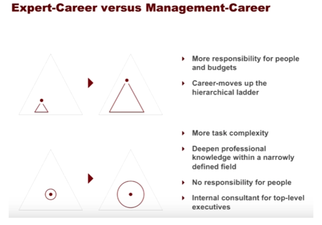 expert and management career