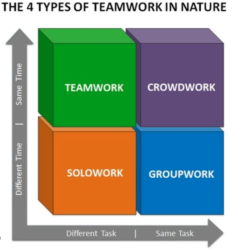 Types of Teamwork