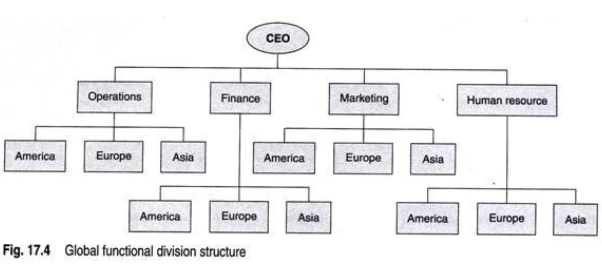 global functional divisional structure