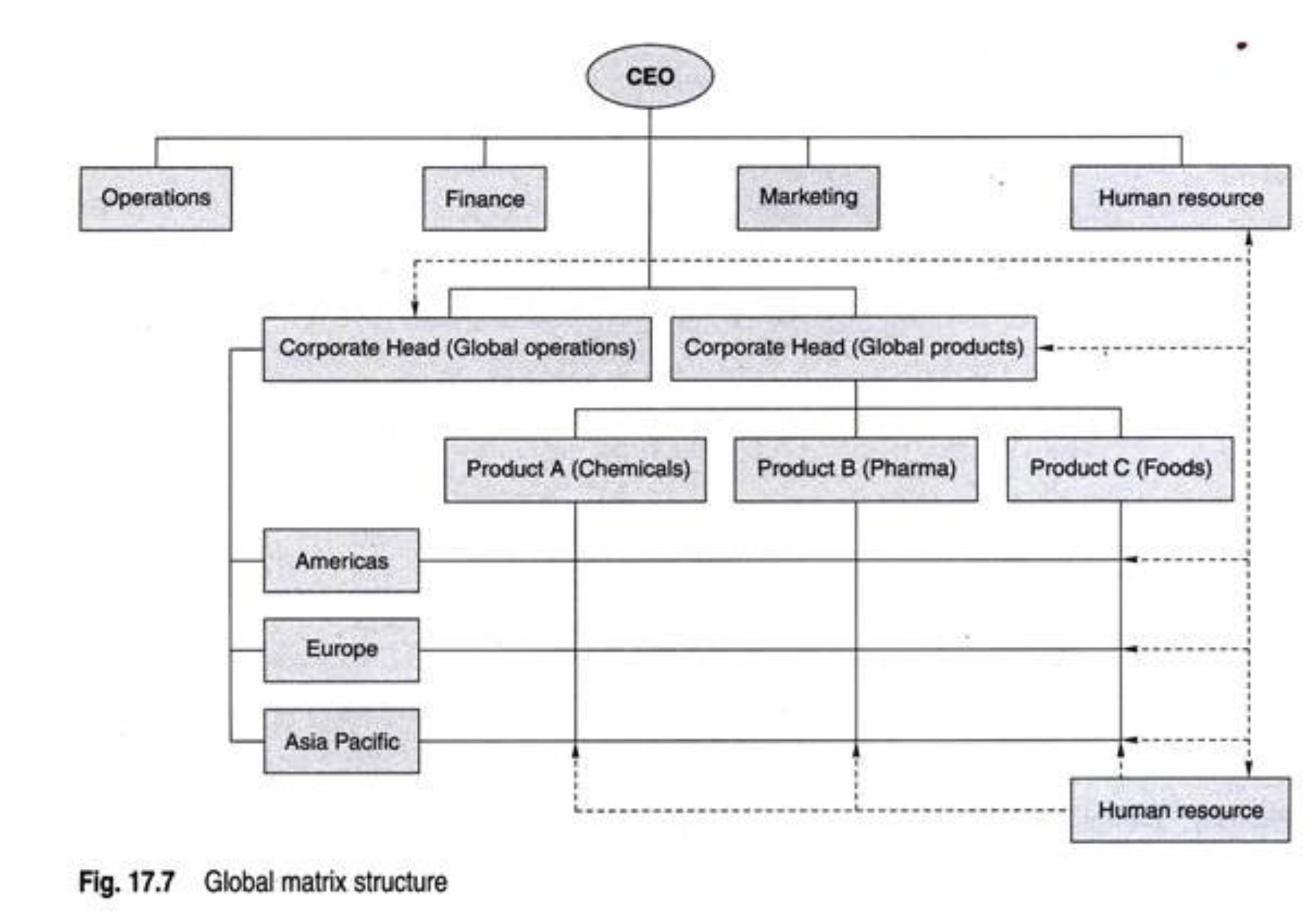 global matrix structure